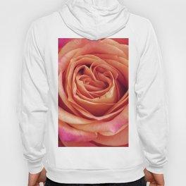 A Summer Bouquet 12 - orange rose Hoody