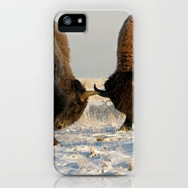BISON FIGHTING iPhone Case