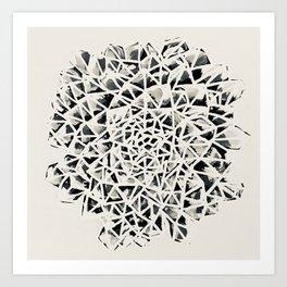 Plate Plant Succulent Black-White Print Art Print