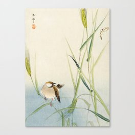 Sparrow and Butterfly  - Vintage Japanese Woodblock Print Art Canvas Print