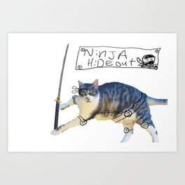 Ninja Jimmy! Art Print