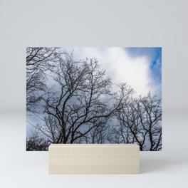 Haunting trees during a cloudy day Mini Art Print