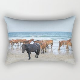 Outer Banks, Corolla, NC, Stallion and his Harem Matted Print Rectangular Pillow