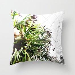 Staghorn Fern Throw Pillow