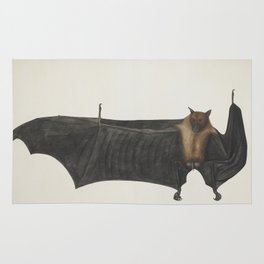 Antique bat vintage nature book plate drawing victorian art nouveau steampunk oddities emo goth Rug