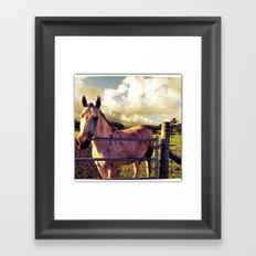 Ronin Horse, Warrior Brother Framed Art Print