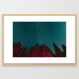 Stars and Pines Framed Art Print
