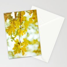 Light Glorifies Everything  Stationery Cards