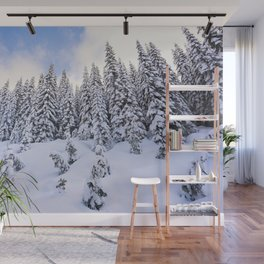 winter in the mountains Wall Mural