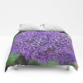 Purple Pom Comforters