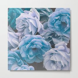 Great Garden Roses blue Metal Print