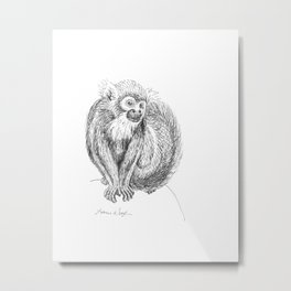 Squirrel Monkey Drawing Metal Print