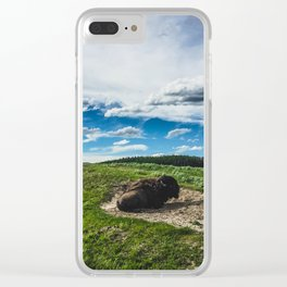 Buffalo, Hayden Valley Yellowstone National Park Clear iPhone Case
