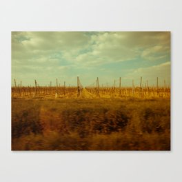 The Spring of Springs. Canvas Print