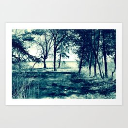 Lakeside: desaturated Art Print
