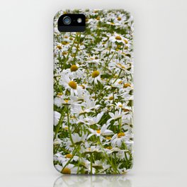 White and Yellow Daisies iPhone Case