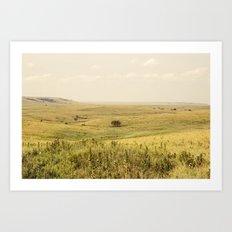 Western Valley Art Print