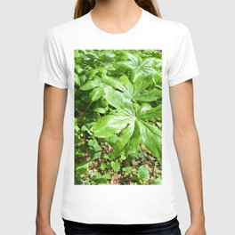 mountain greenery T-shirt