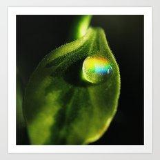Like A Rainbow Art Print