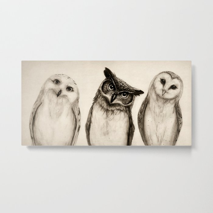 The Owl's 3 Metal Print