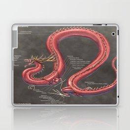Asian Lung Muscle Anatomy Laptop & iPad Skin