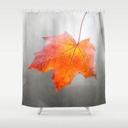 Velvet Autumn Shower Curtain