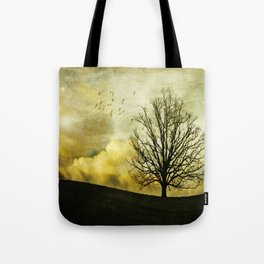 Painting a sunset Tote Bag
