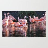 dublin Area & Throw Rugs featuring Flamingos, Dublin Zoo by JBuck