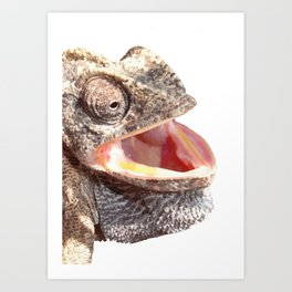 Chameleon with Happy Smiling Expression Vector Art Print