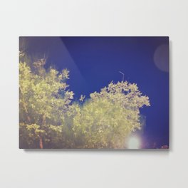 301 | west texas Metal Print