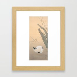 Cat and Plum Blossoms Japanese Painting Framed Art Print