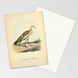Macqueen's Bustard, otis macqueeni, 216 Stationery Cards
