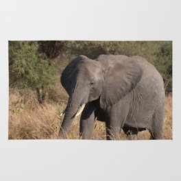 Elephant Mother and Young Rug