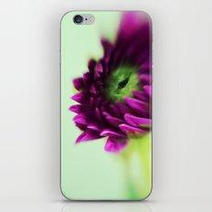 Dahlia Bud iPhone & iPod Skin