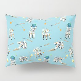 Hold the Earth Pillow Sham