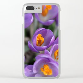 Bunch of Crocus Clear iPhone Case