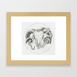 Used Framed Art Print