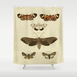 Vintage Moths Shower Curtain