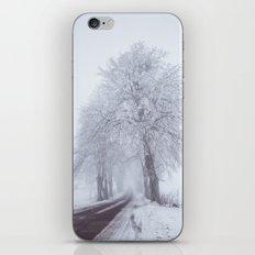 Heading north iPhone & iPod Skin