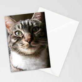 Sir Munchalot Stationery Cards