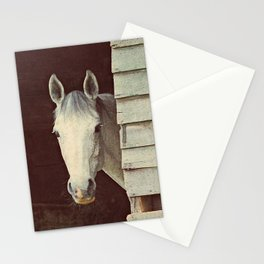 Peekaboo Mare // Horse Stationery Cards