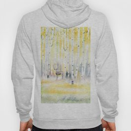Birch Forest In The Morning Hoody