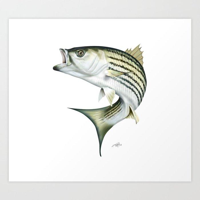 Striped Bass Art Print By Marytracy Society6
