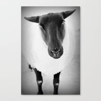 sheep Canvas Prints featuring sheep by Bunny Noir