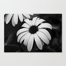 Untitled Flower Canvas Print