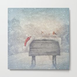 Winter wonderland birds  Metal Print