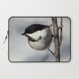 Black-capped Chickadee Laptop Sleeve