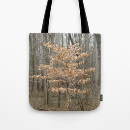 Beautful tree in John Heinz Wildlife Refuge Tote Bag