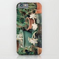 Roadside Greenery iPhone 6s Slim Case