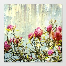 OPPOSITE LOVE - Rusted Magnolia Tree - (decrepit beauty) Canvas Print